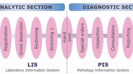 CaseManager patholofy information system