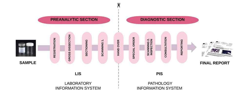 Pathology lab workflow