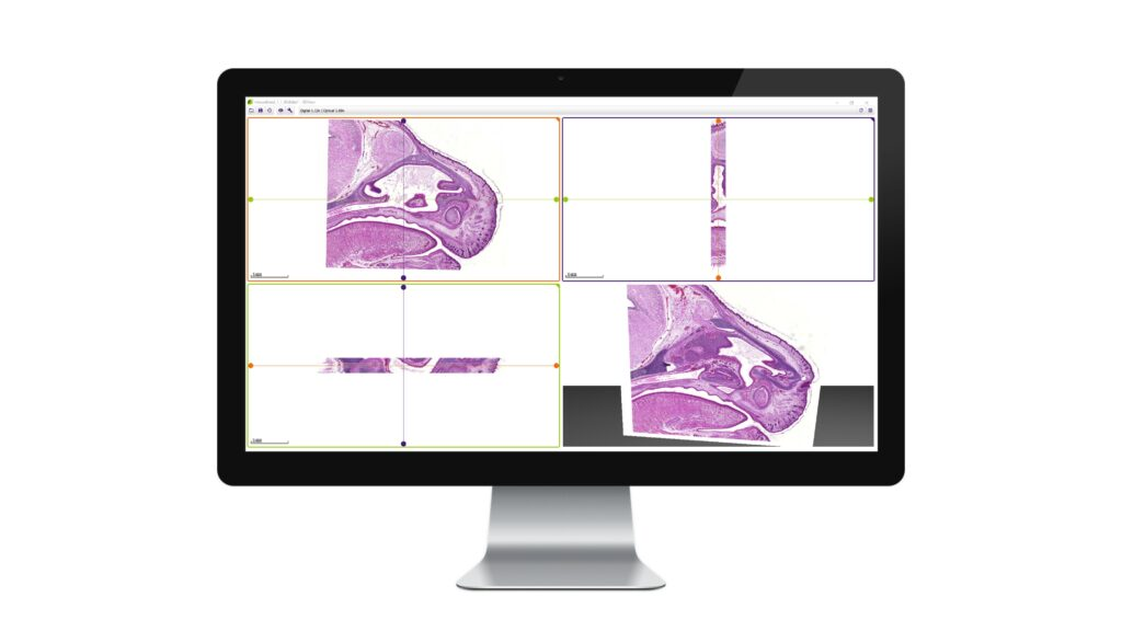 3dview on a monitor